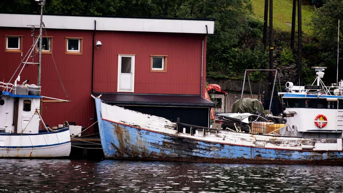 Rekefjord